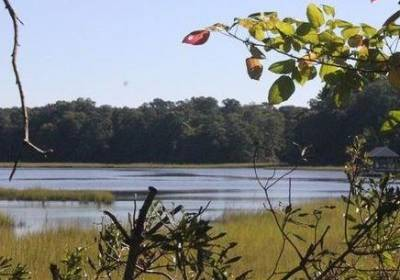 110 TIGERS EYE , Isle of Wight County, VA 23430