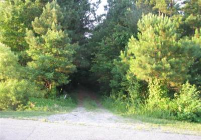 30 ACR Meadow Country Road, Suffolk, VA 23434