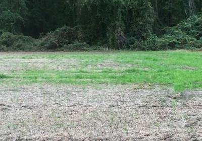 404 South End Road, Currituck County, NC 27950