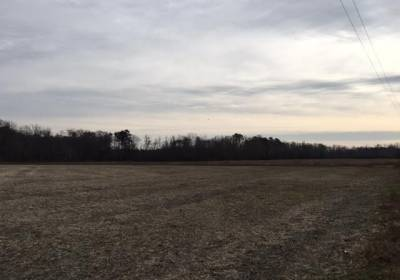 13AC Black Creek (off of) Road, Southampton County, VA 23866