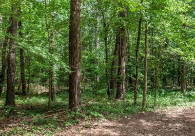 6.21AC Tidewater Trail, Middlesex County, VA 23149