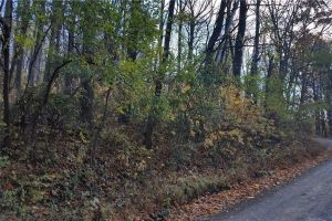 property image for L98 Drummer Hill Warren County VA 22630