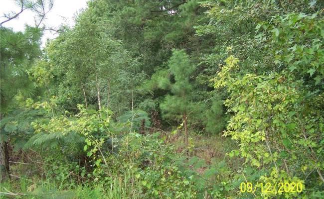 3.7 ac Tennessee Road, Southampton County, VA 23844