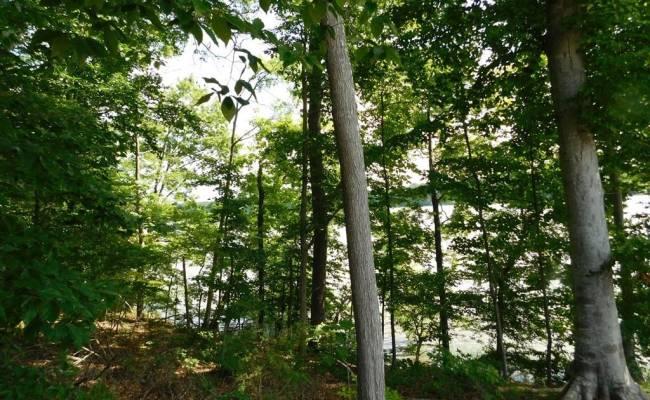 LOT 43 Mountain Rock Trail, Mecklenburg County, VA 23917