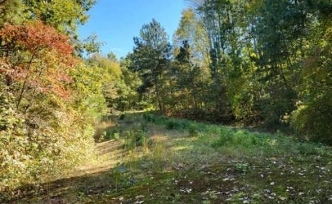 Lot C Homestead Road, New Kent County, VA 23089